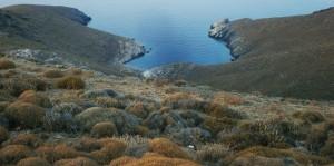 Kostadis - Ano Meria Syros